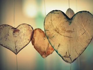 heart-700141_1920.jpeg